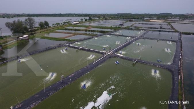 Jelajah Ekonomi KONTAN (Hari ke-1)  Bandara sepi e163d48aee