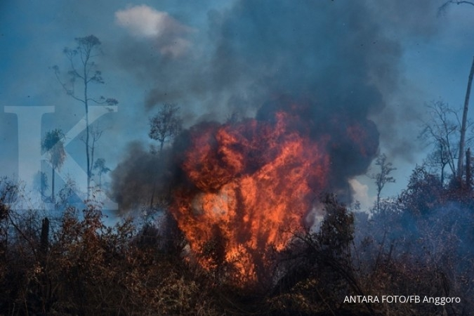 Police name four suspects in Dumai forest fires