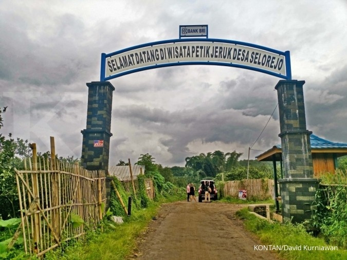 Wisata Petik Jeruk Malang. Jelajah Ekonomi Kontan tol Trans-Jawa