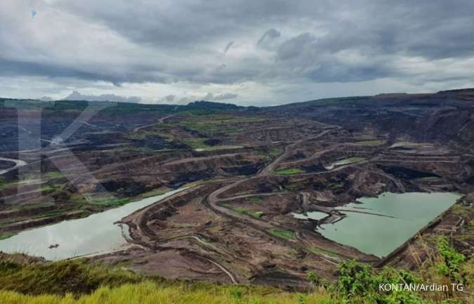Pemerintah kontrol produksi batubara, ini jawaban INDY dan BUMI