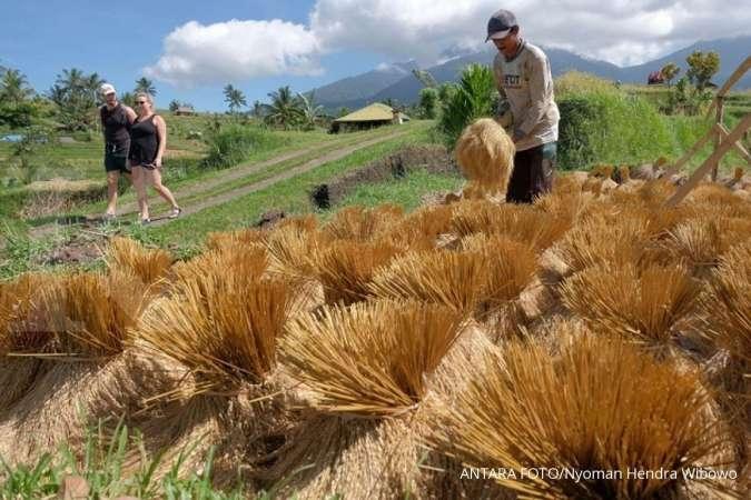 Petani berupaya mempertahankan eksistensi Subak beserta budaya pertaniannya untuk bisa menopang pariwisata di daerah itu. ANTARA FOTO/Nyoman Hendra Wibowo/nym/nz