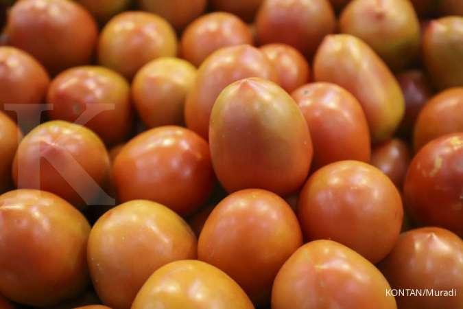 Makan Tomat Secara Rutin Bisa Memperpanjang Usia Lo