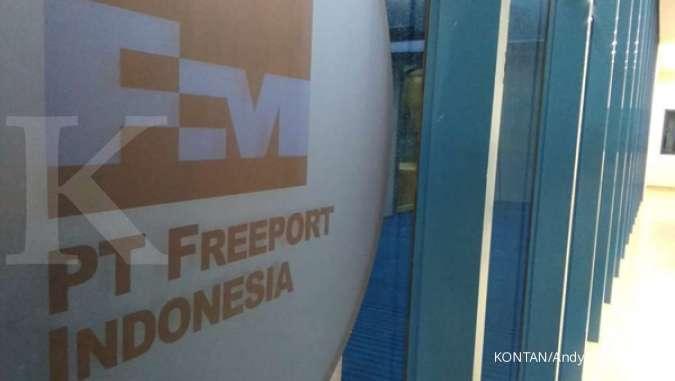 Bakal bangun smelter baru di Weda Bay, ini kata Presdir Freeport Indonesia