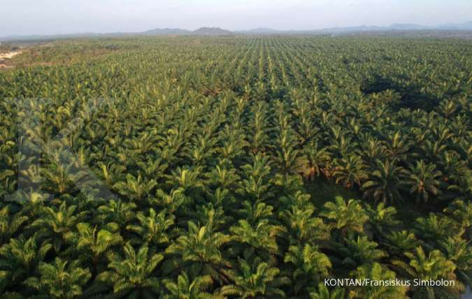 Malaysia says will work diplomatically with India if palm oil imports curbed