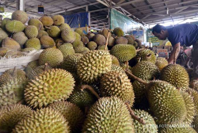 The benefits of durian can prevent cardiovascular disease.