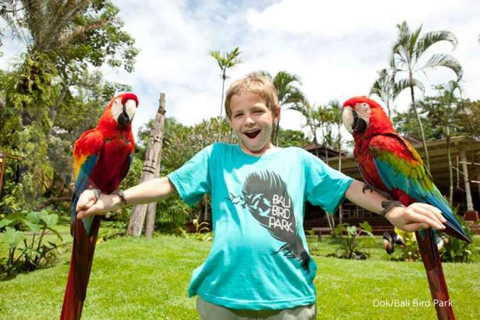 Mau bermain dengan burung di pulau dewata, ini harga tiket masuk Bali Bird Park