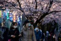 Japan's economy shrinks faster than estimated as virus compounds recession risk