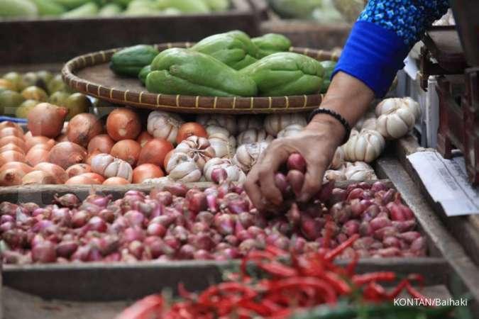 Apakah Bawang Merah Dapt Menghilangkan Bekas Luka Jerawat