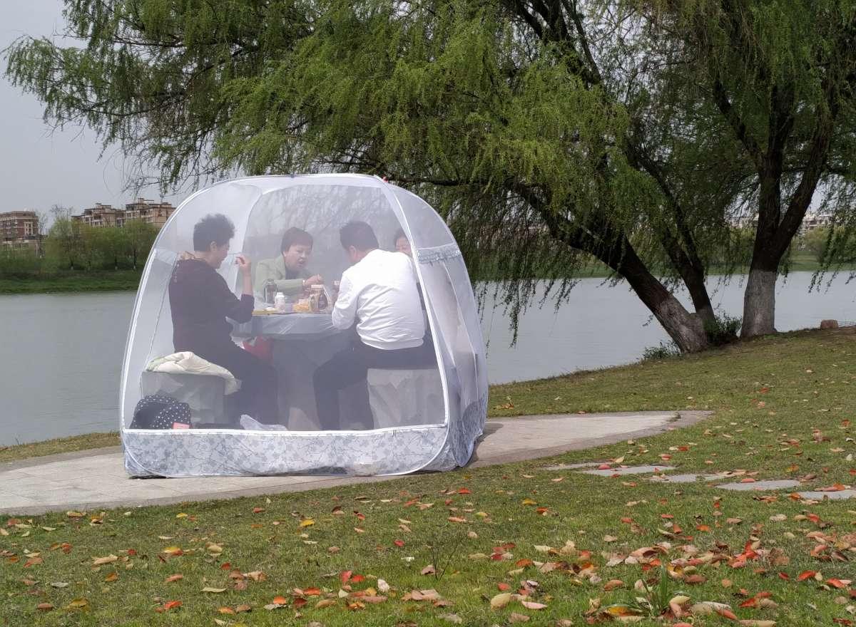 Piknik dalam tenda transparan