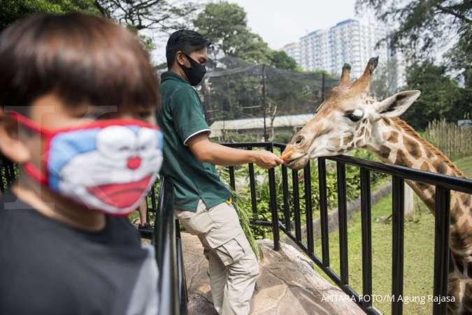 Ini harga tiket Bandung Zoological Garden, cocok untuk jadi tujuan liburan Tahun Baru