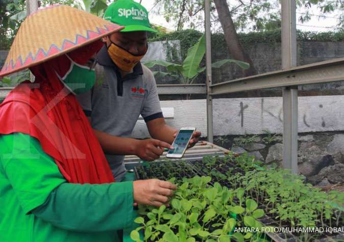 Kementan gelar pelatihan pemanfaatkan IT dan laporan utama bagi penyuluh pertanian
