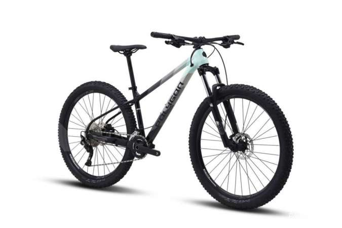 Sepeda gunung Polygon Xtrada 5