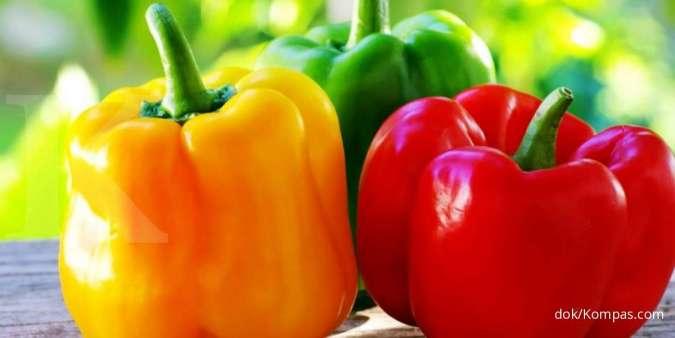 Paprika dengan rasa yang pedas termasuk salah satu pantangan amandel.