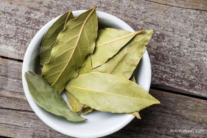 Sederet manfaat daun salam untuk kesehatan tubuh