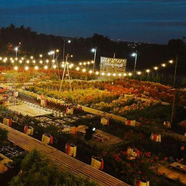 Tapos Garden, Kafe Yang Penuh Hamparan Bunga Warna-warni