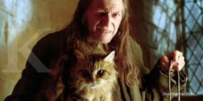 Kucing lucu Mrs. Norris di franchise film Harry Potter.