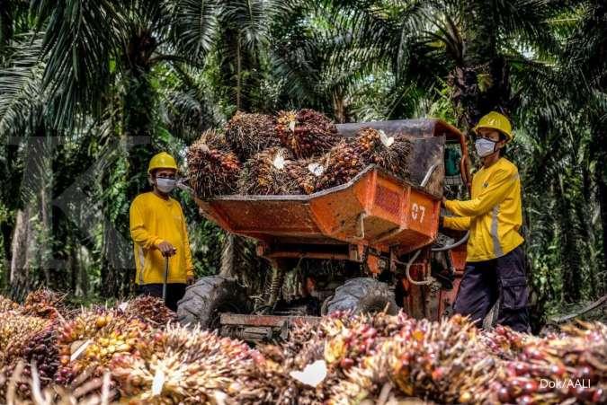 Bisnis Perkebunan Menyokong Kinerja Konglomerasi