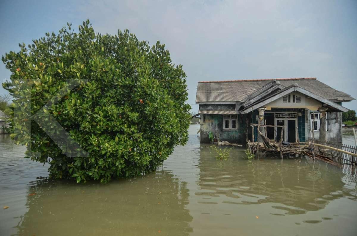 Ancaman abrasi di utara Bekasi